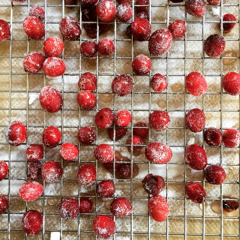 Gesuikerde cranberry's
