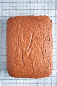 Chocoladecake met hazelnoten laten afkoelen op een rooster / www.eenlepeltjelekkers.be